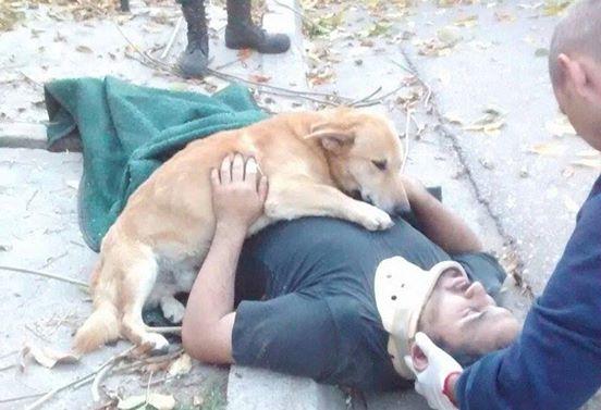 Když záchranáři dorazili na místo nehody, nemohli se ubránit slzám