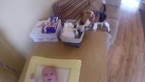 Přebalovala dítě, když v tom přišel její pes a udělal něco nečekaného!