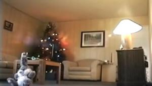V obývacím pokoji nechali zapnutou kameru. Během jedné minuty nahráli něco děsiv