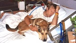 Lékaři mu nařídili opustit nemocniční pokoj svého pána. Podívej se na reakci psa