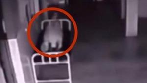 Žena ležela mrtvá v nemocniční chodbě. Snímala jí bezpečtnostní kamera. To, co s