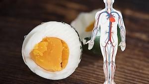 Co se stane, když budete jíst vejce každý den? Budete se divit, co to udělá pro