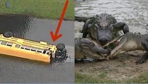 Autobus vezl 27 dětí a spadl do jezera plného aligátorů. 10letý chlapec ale zach