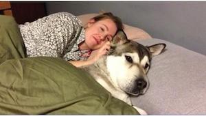 Nedovolíte svému psovi, aby spal s vámi v jedné posteli? Po přečtení tohoto člán
