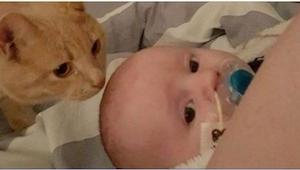 To, co tento kocour dělá pro nemocné miminko, je překrásné!