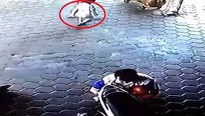 Jedná se o to nejděsivější video, jaké jsme kdy viděli. Naštěstí… se nikomu nic