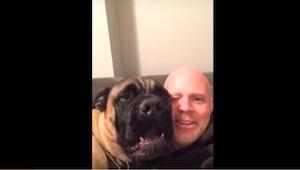 Co dělá tento pes jen aby umlčel svého pána, je tak legrační, že se nebudete moc