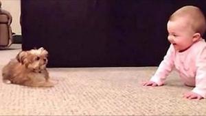 Sledujte toto roztomilé video. Rodiče natočili, jak si jejich miminko hraje se š
