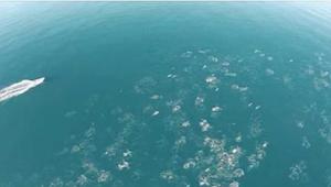 Muž natáčel oceán z dronu. To, co se mu povedlo natočit, je neuvěřitelné!