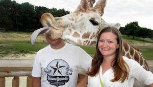 24 nejzábavnějších fotografií, které překazila zvířata! Nemůžeme se přestat smát
