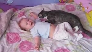 Dítě začíná plakat - reakce kočky vás překvapí!