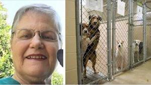 Starší žena adoptovala z útulku psa, kterého nikdo nechtěl. Podívejte se, s kým