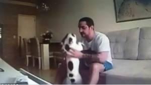 Od té doby, co se k ní přestěhoval přítel, začali se její psi divně chovat. Díky