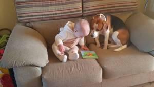 Rodiče se rozhodli natočit svou dceru jak si hraje se psem. Toto video vidělo už