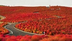 21 kouzelných míst, která byste měli navštívit.