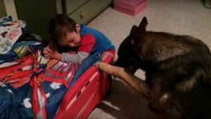 Přátelé jim nevěřili, když říkali, co dělá jejich pes. Natočili video jako důkaz