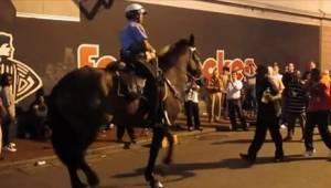 To, co udělal tento kůň, je úžasné! Kéž by bylo takových videí víc.
