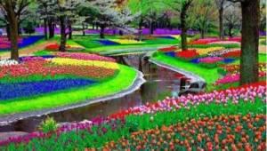 Podívejte se na 15 fotek, které jsou přáním každého zahradníka…