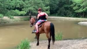 Kůň měl už dost nošení turistů s nadváhou. To, co zaznamenala kamera, pobaví kaž