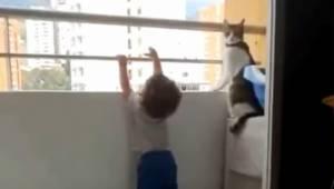 Dziecko chciało wspiąć się na barierkę balkonu, nie uwierzysz jaka była reakcja